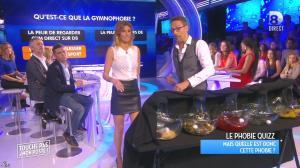Caroline Ithurbide dans Touche pas à mon Poste - 06/11/15 - 12