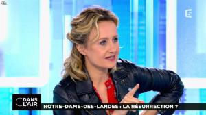 Caroline Roux dans C dans l Air - 02/07/16 - 08