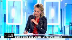 Caroline Roux dans C dans l'Air - 02/07/16 - 14