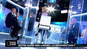 Caroline Roux dans C dans l'Air - 02/07/16 - 15