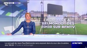 Pascale De La Tour Du Pin dans le Dej Info - 09/09/21 - 08