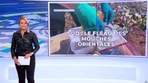 Pascale De La Tour Du Pin dans le Dej Info - 16/09/21 - 03