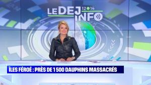 Pascale De La Tour Du Pin dans le Dej Info - 16/09/21 - 20