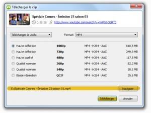 ext - 4k video downloader - 2