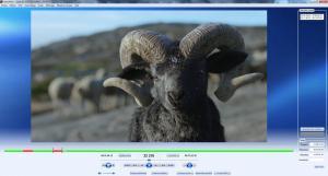 ext - Videoredo avec annotations