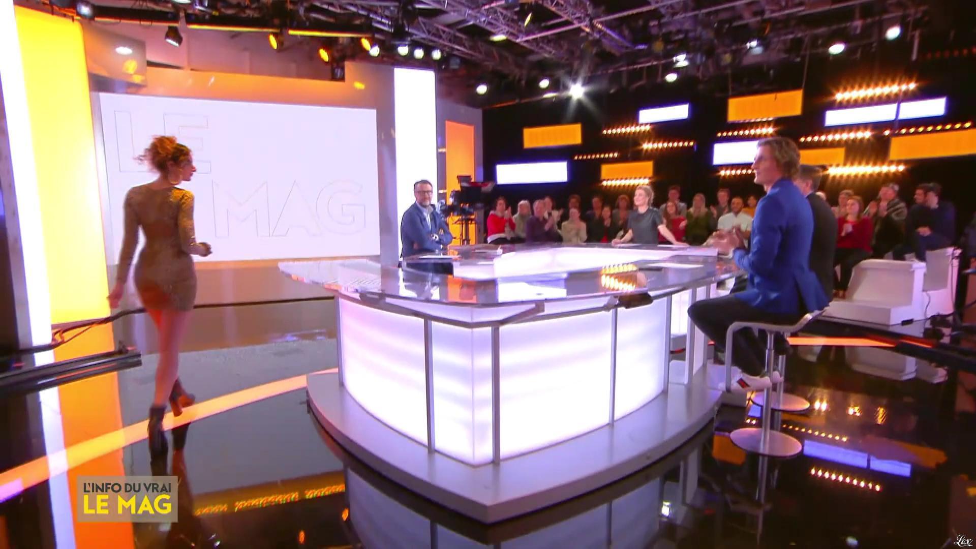 Camille Lavabre dans l'Info du Vrai le Mag. Diffusé à la télévision le 21/01/19.