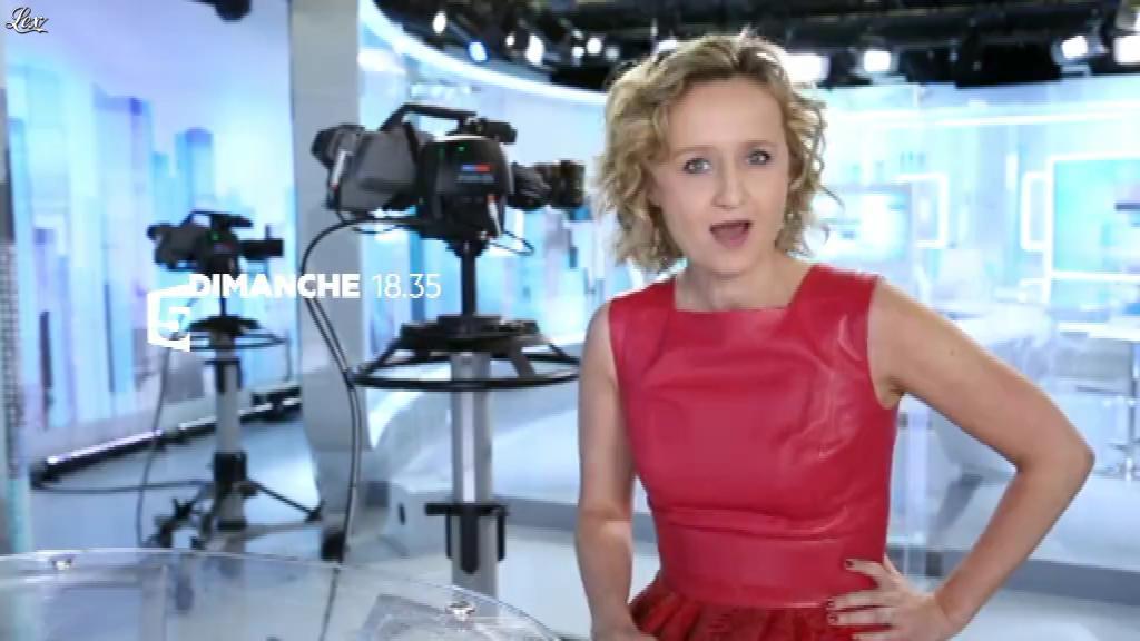 Caroline Roux dans Facebook de C Politique. Diffusé à la télévision le 08/01/16.