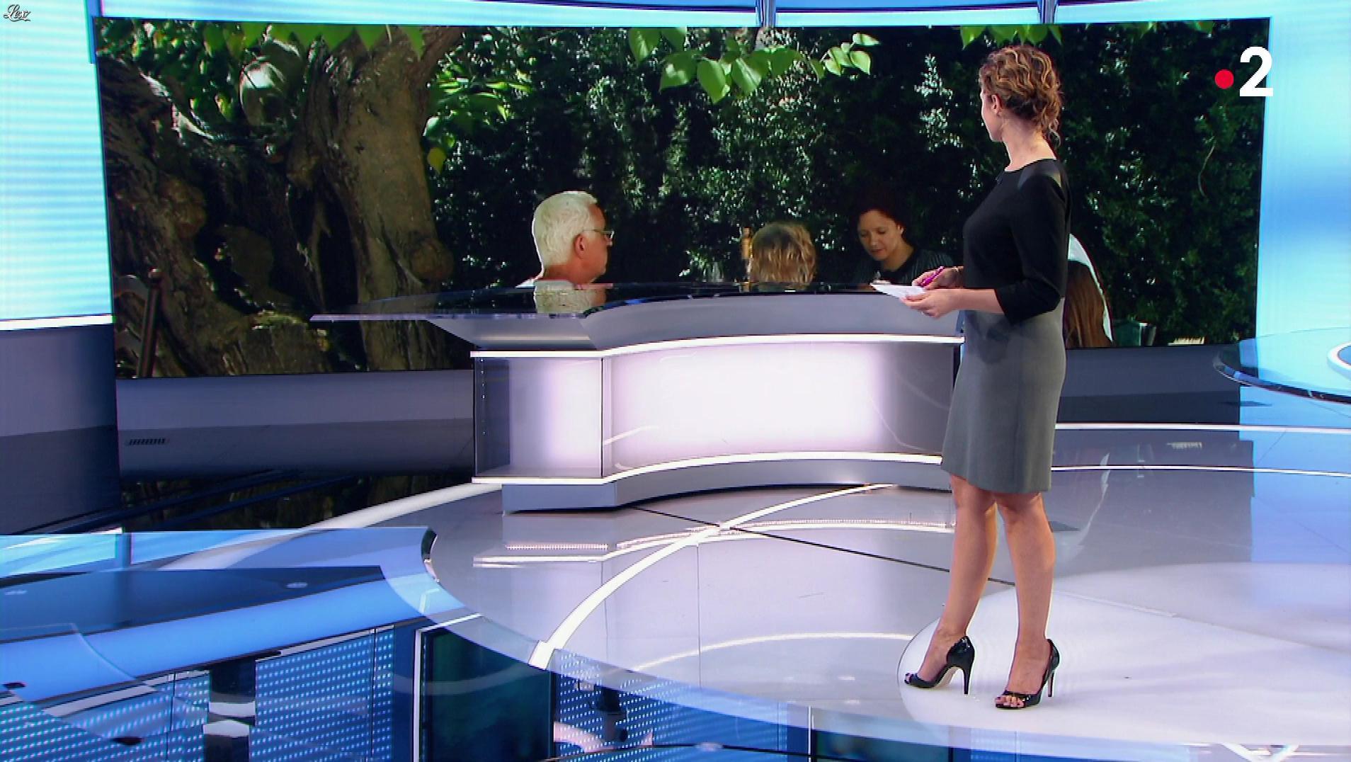 Marie Sophie Lacarrau dans le 13h. Diffusé à la télévision le 16/11/18.