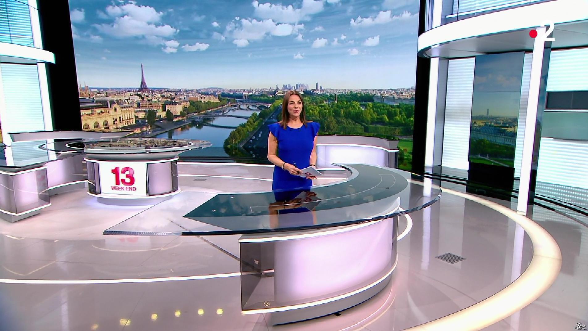 Sophie le Saint dans le 13h. Diffusé à la télévision le 28/04/19.