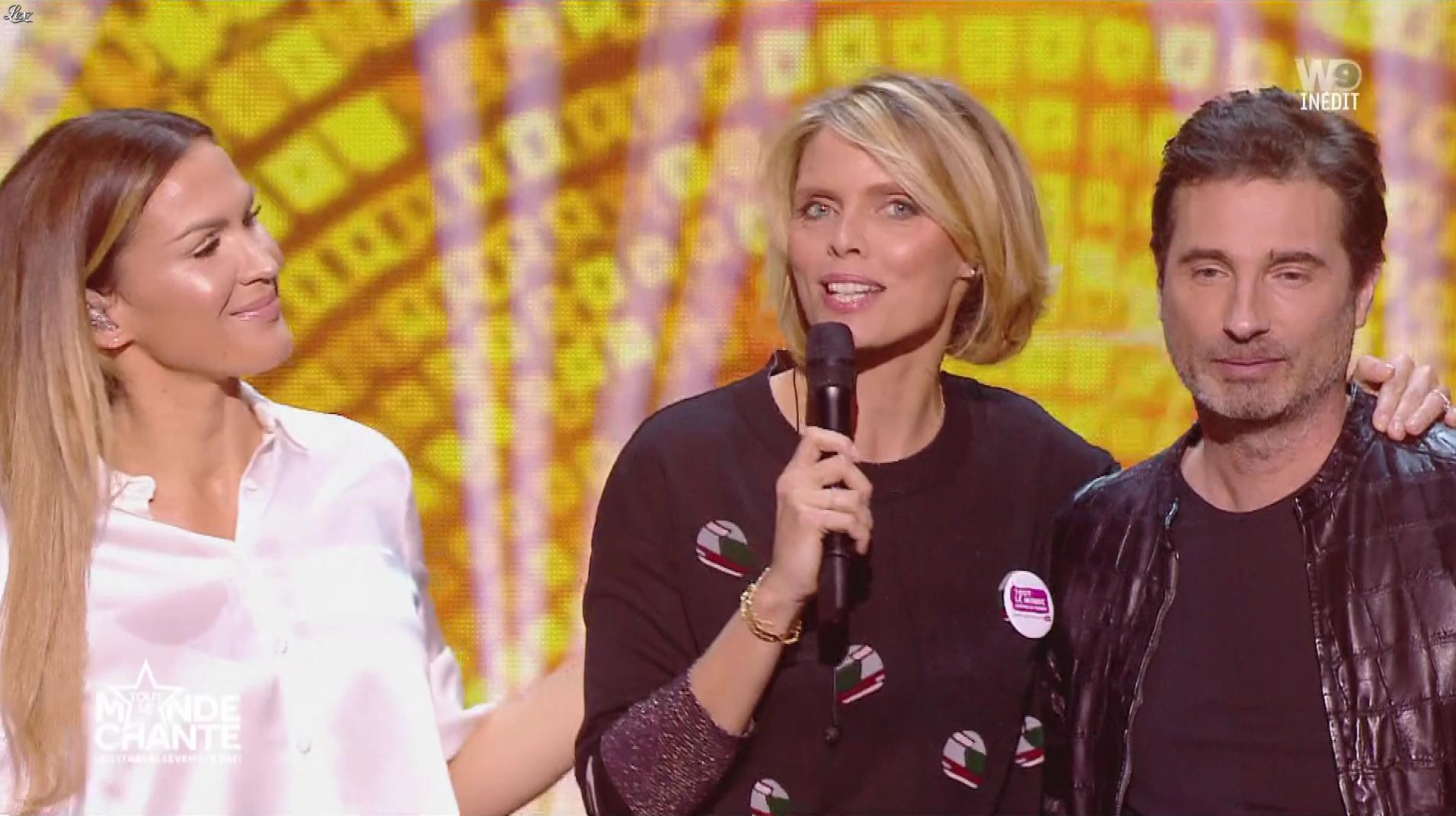Sylvie Tellier dans Tout le Monde Chante. Diffusé à la télévision le 03/01/19.
