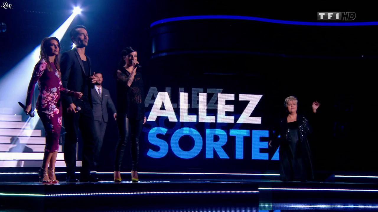 Tal et Alizée dans l'Incroyable Anniversaire de Line. Diffusé à la télévision le 28/12/13.