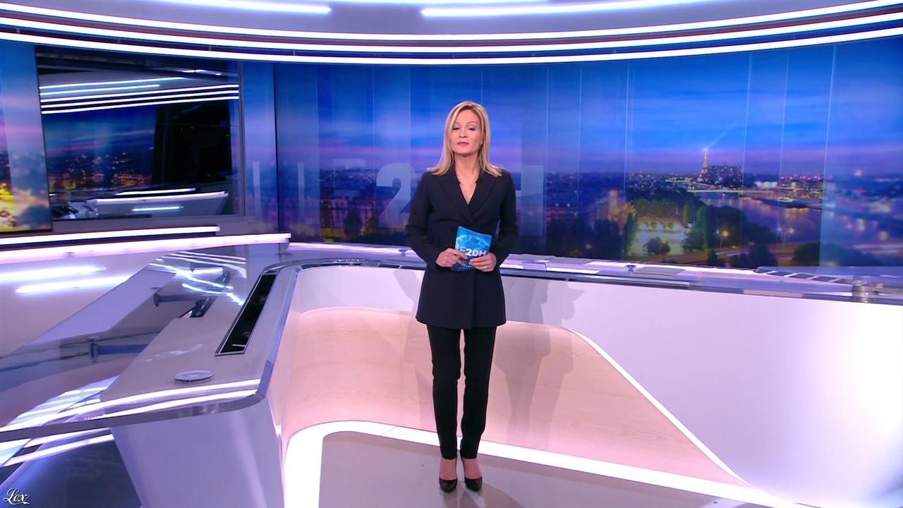 Audrey Crespo-Mara dans le 20h. Diffusé à la télévision le 03/01/16.
