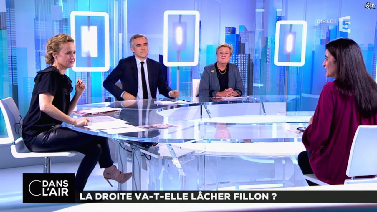 Caroline Roux dans C dans l'Air. Diffusé à la télévision le 01/02/17.