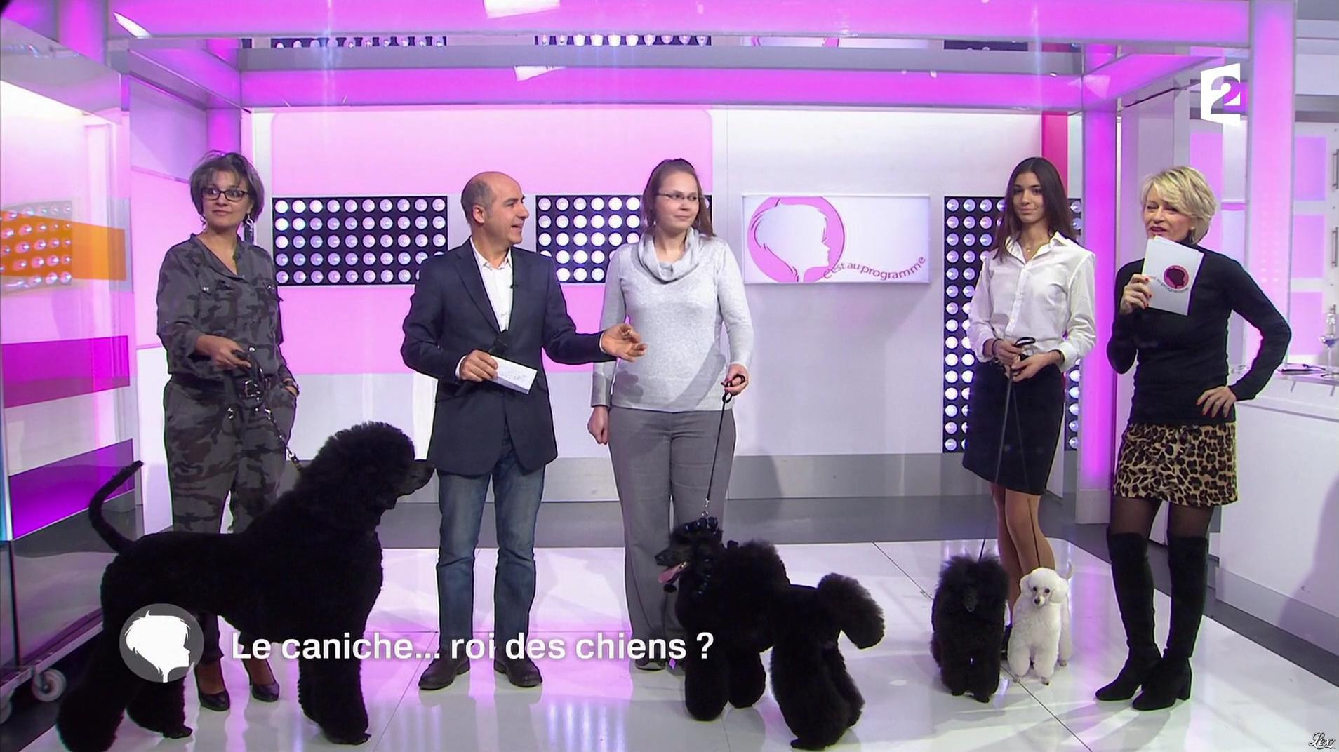 Sophie Davant dans c'est au Programme. Diffusé à la télévision le 07/12/16.