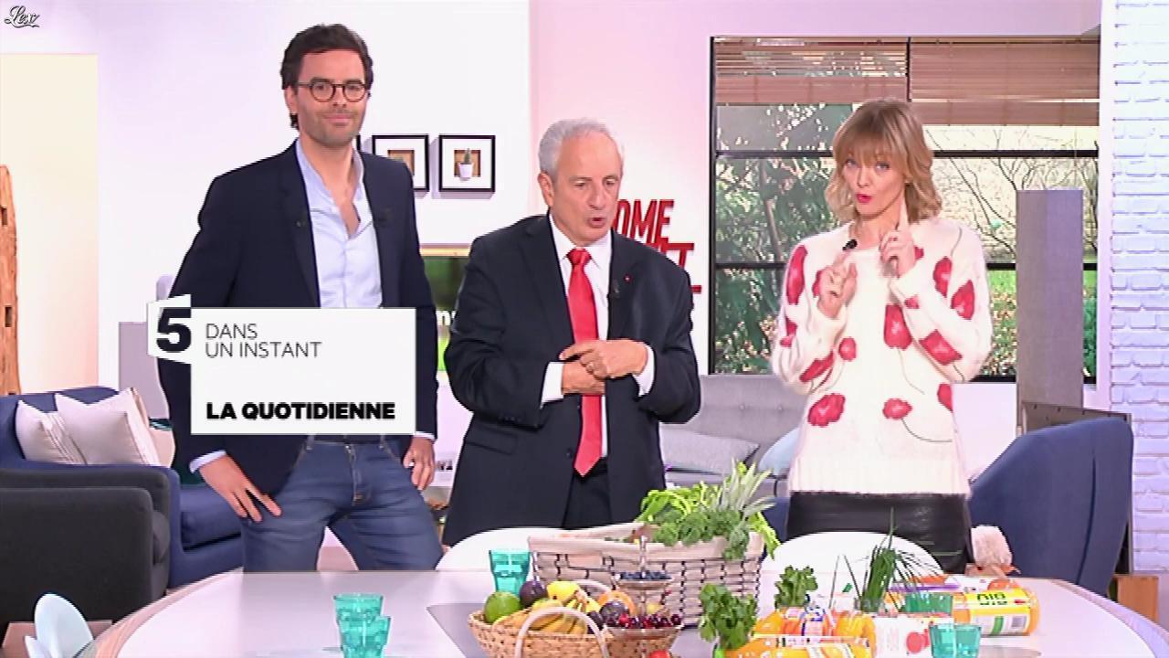 Maya Lauqué dans la Quotidienne. Diffusé à la télévision le 05/01/17.