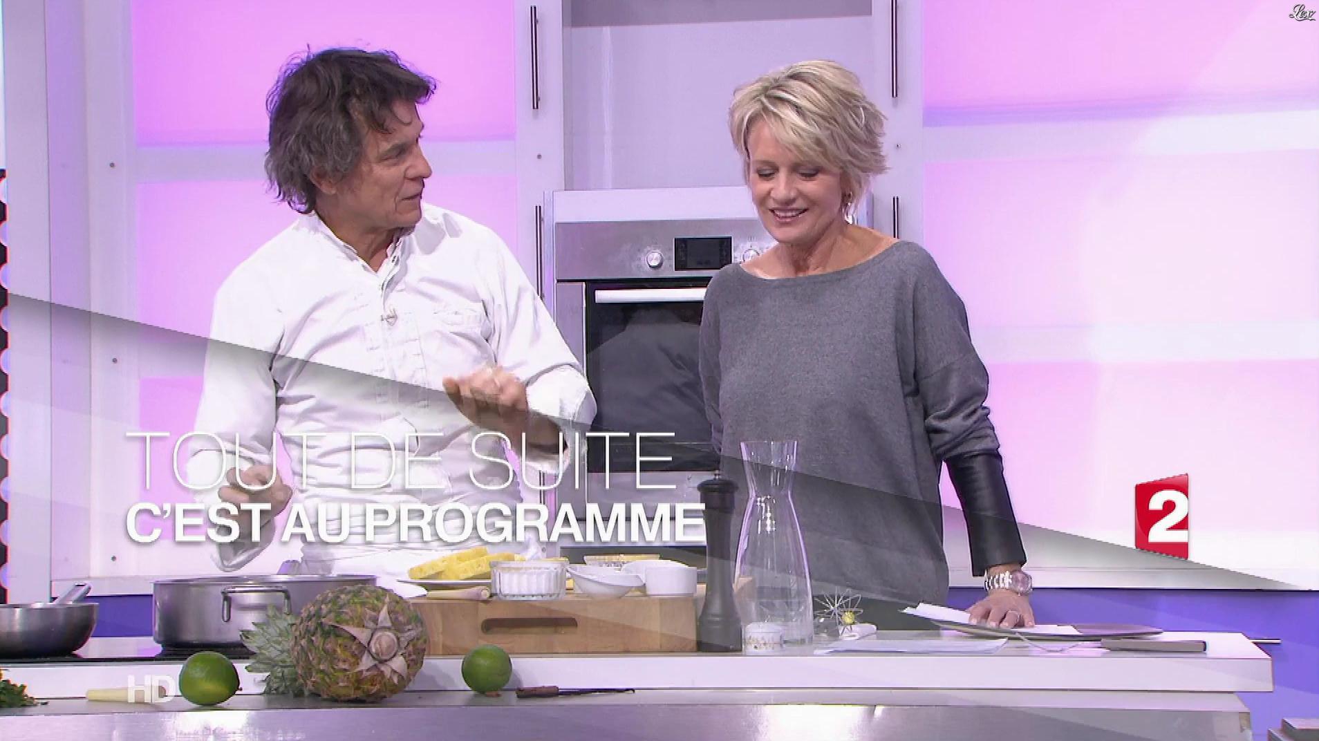 Sophie Davant dans c'est au Programme. Diffusé à la télévision le 20/01/17.