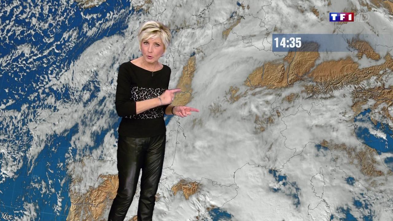 Evelyne Dhéliat à la Météo de de 20h. Diffusé à la télévision le 18/11/13.