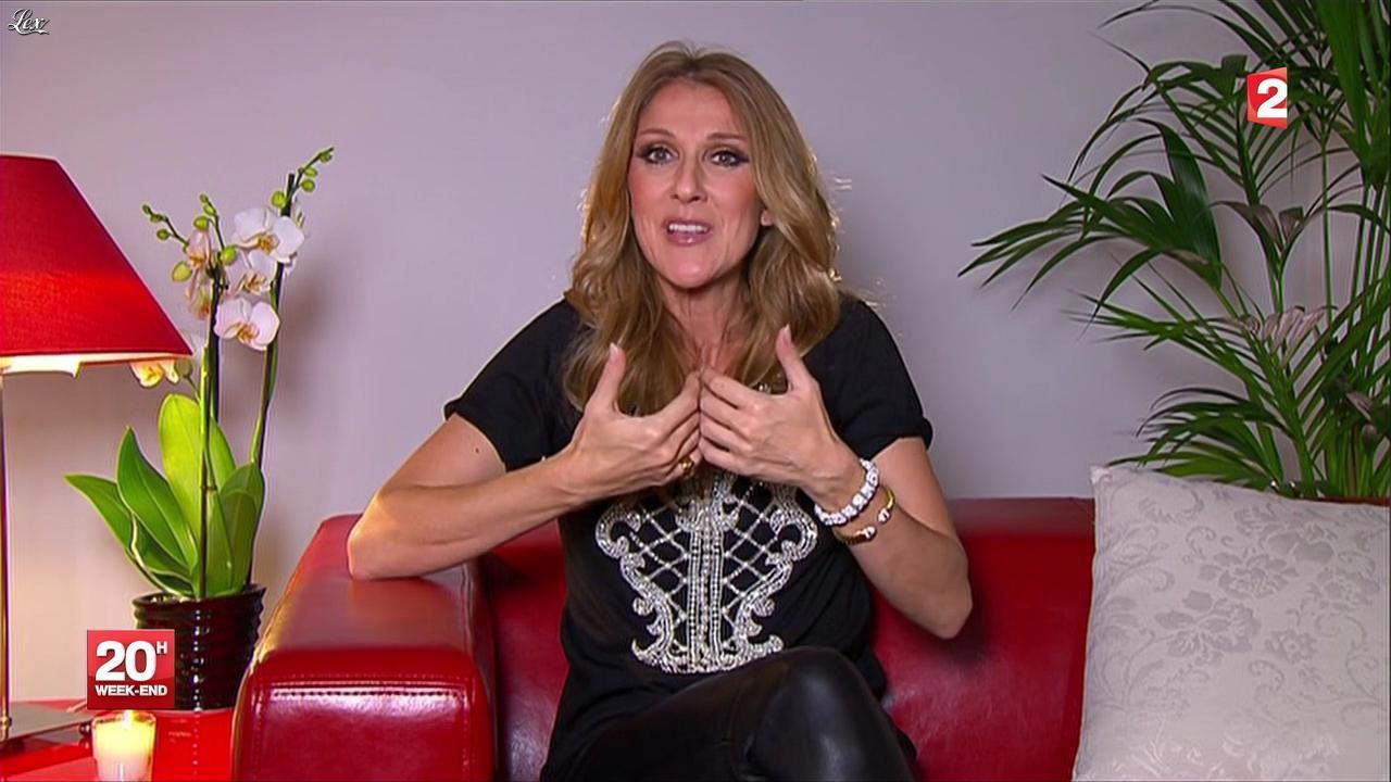 Céline Dion au JT de 20h. Diffusé à la télévision le 24/11/12.
