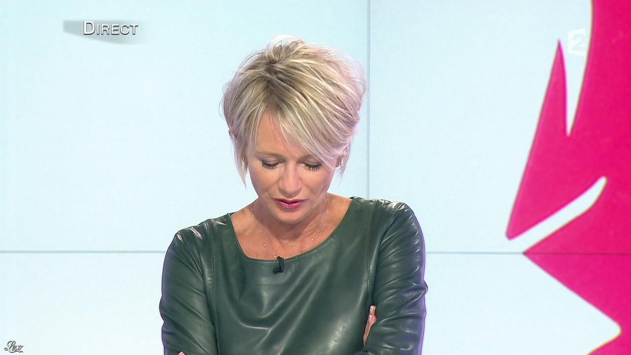 Sophie davant dans c est au programme 21 11 12 063 - C est au programme chroniqueur ...
