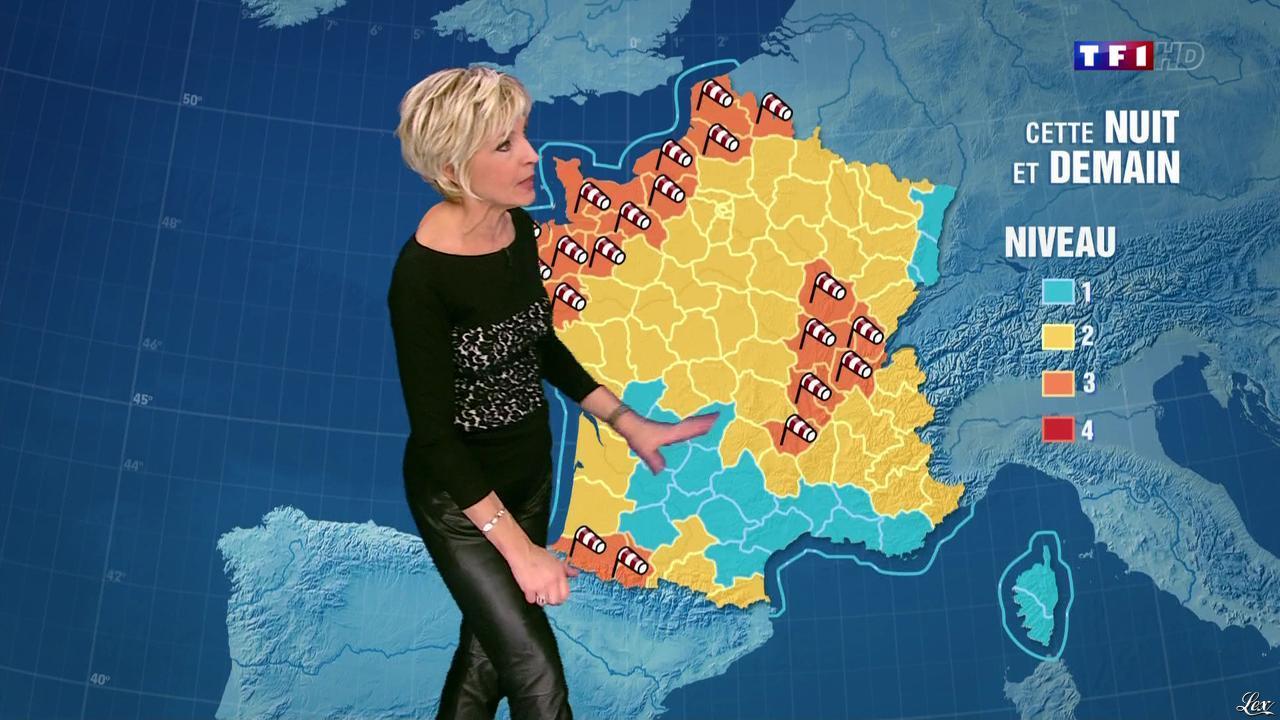 Evelyne Dhéliat à la Météo de 20h. Diffusé à la télévision le 23/12/13.