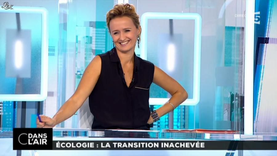caroline roux dans c dans l air 17 10 14 06. Black Bedroom Furniture Sets. Home Design Ideas