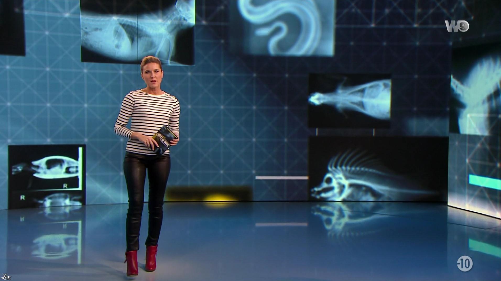 Stéphanie Renouvin dans Veto de Choc. Diffusé à la télévision le 01/02/18.