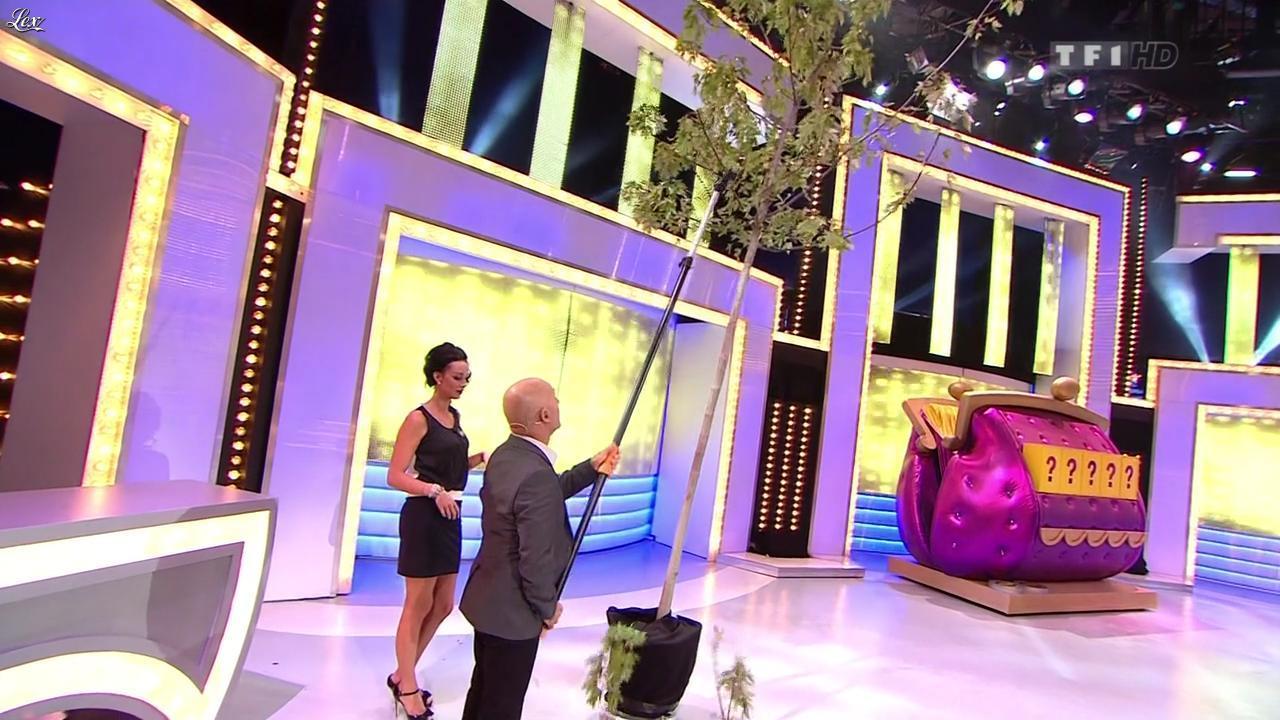 Fanny Veyrac dans le Juste Prix. Diffusé à la télévision le 13/11/12.