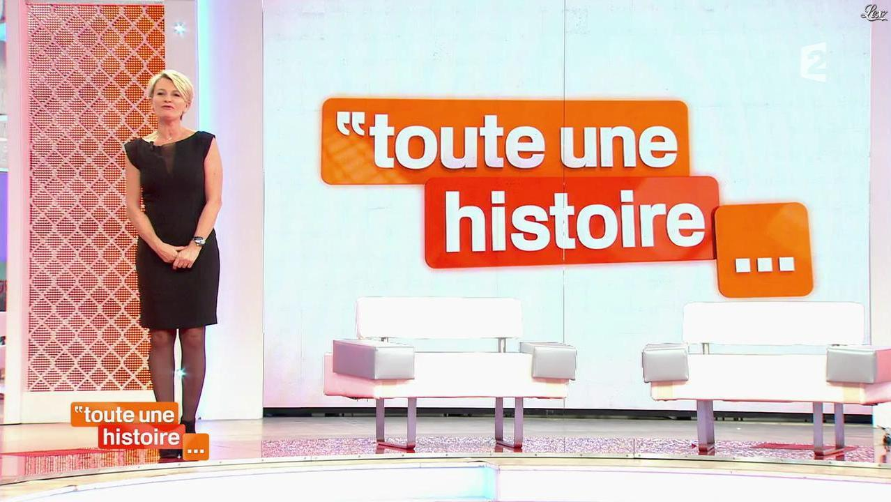 Sophie Davant dans Toute une Histoire. Diffusé à la télévision le 20/12/13.