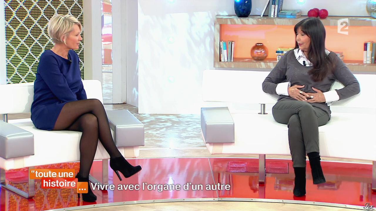 Sophie Davant Dans Toute Une Histoire 21 11 13 02