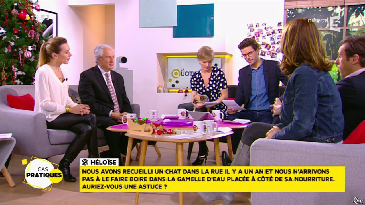 Laetitia Barlerin dans la Quotidienne. Diffusé à la télévision le 17/12/14.