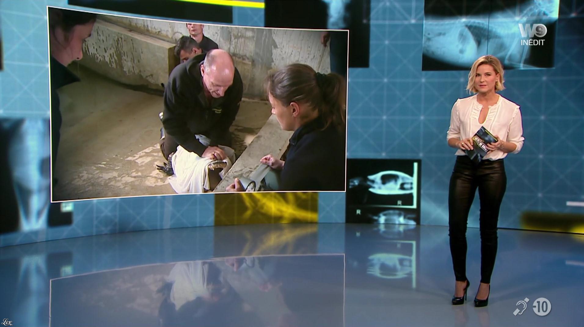 Stéphanie Renouvin dans Veto de Choc. Diffusé à la télévision le 25/01/18.