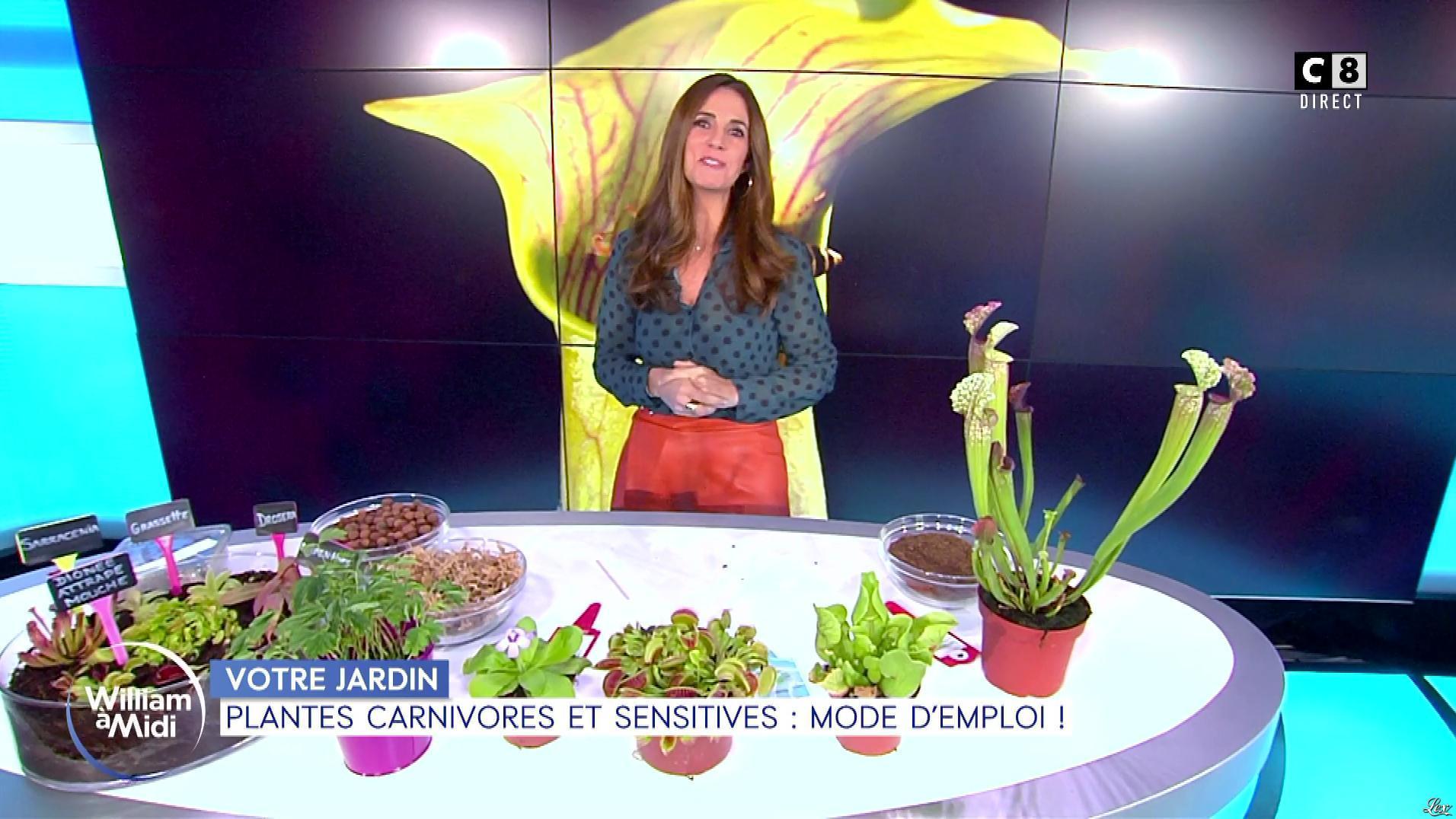 Caroline Munoz dans William à Midi. Diffusé à la télévision le 15/11/19.