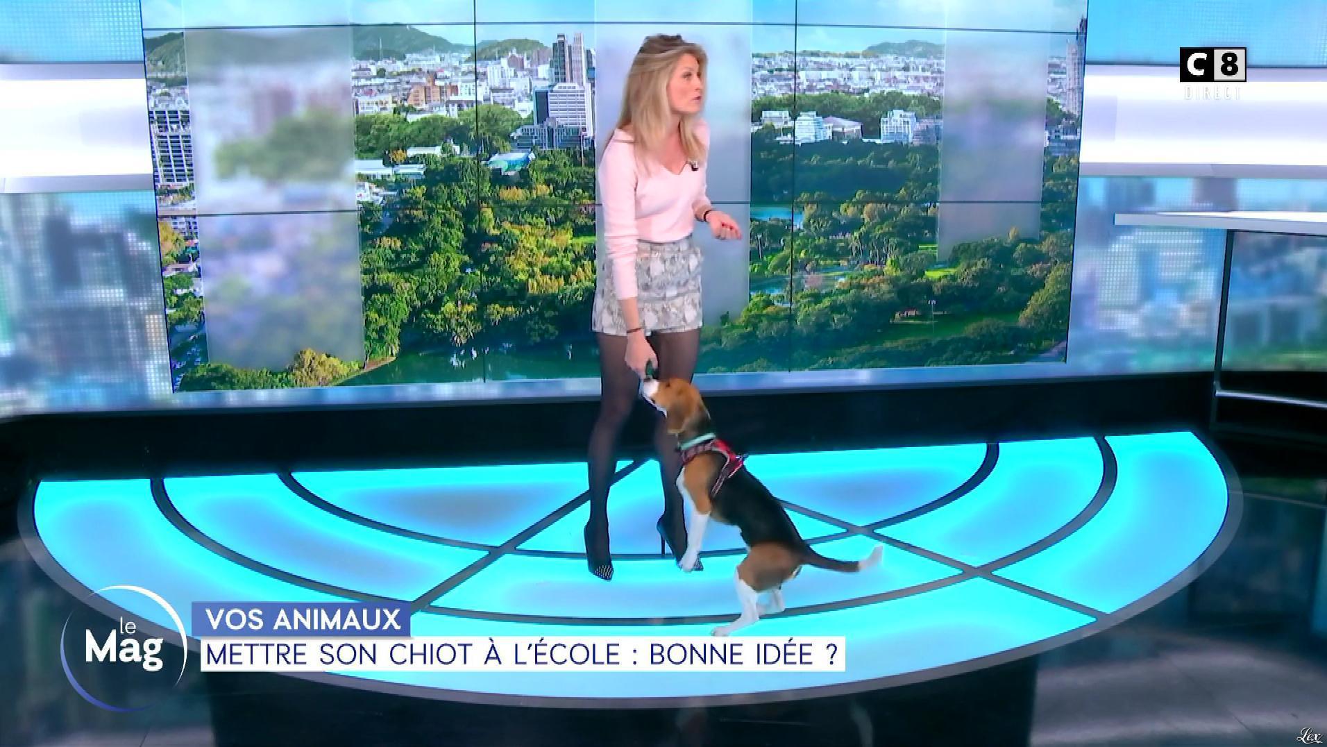 Sandrine Arcizet dans William à Midi. Diffusé à la télévision le 15/03/19.