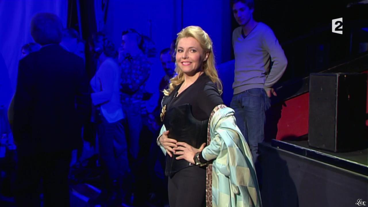 Elizabeth Vidal dans On n'est pas Couché. Diffusé à la télévision le 19/04/14.