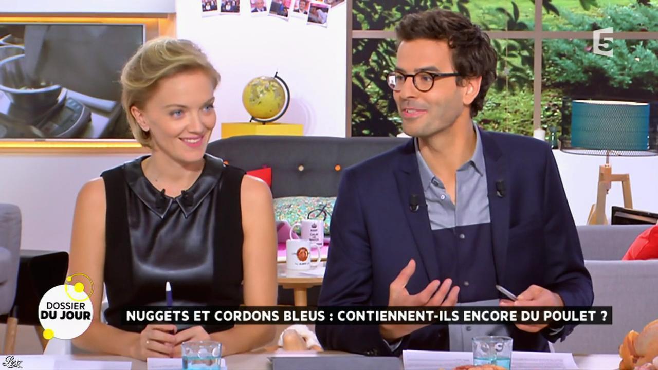 Maya Lauqué dans la Quotidienne. Diffusé à la télévision le 11/11/14.