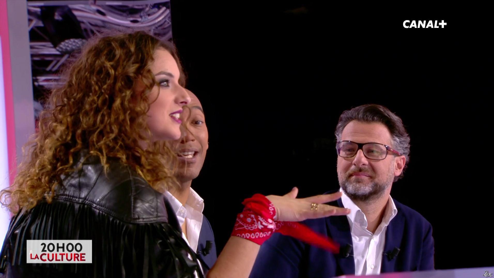 Camille Lavabre dans l'Info du Vrai. Diffusé à la télévision le 26/01/18.