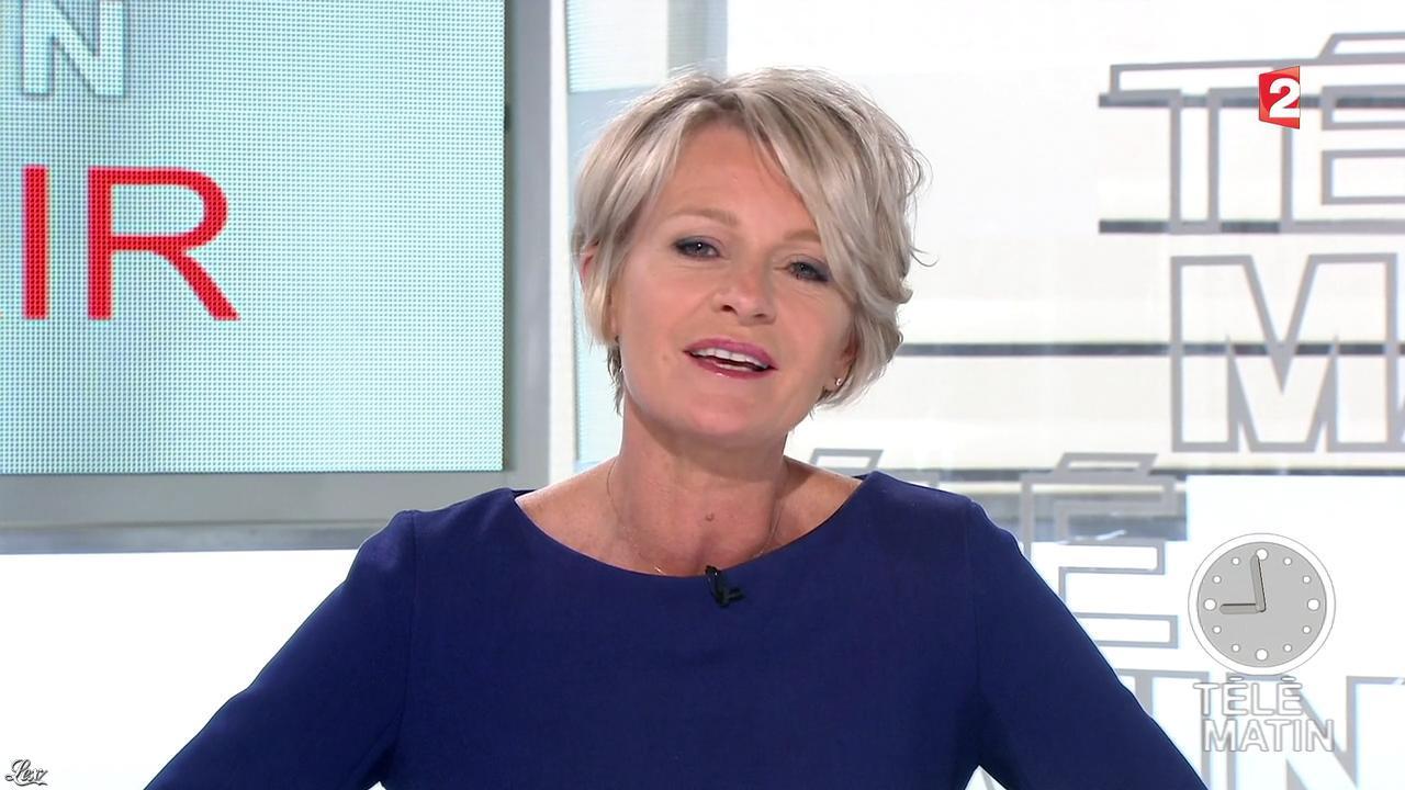 Sophie Davant dans Télématin. Diffusé à la télévision le 16/01/14.