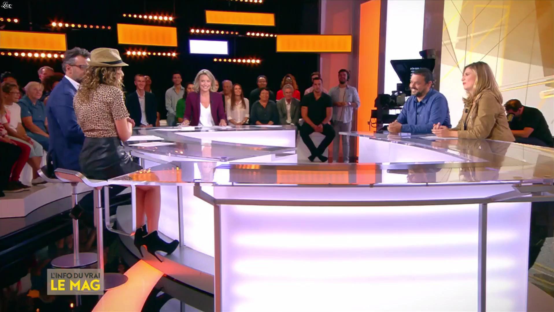 Camille Lavabre dans l'Info du Vrai. Diffusé à la télévision le 10/09/18.