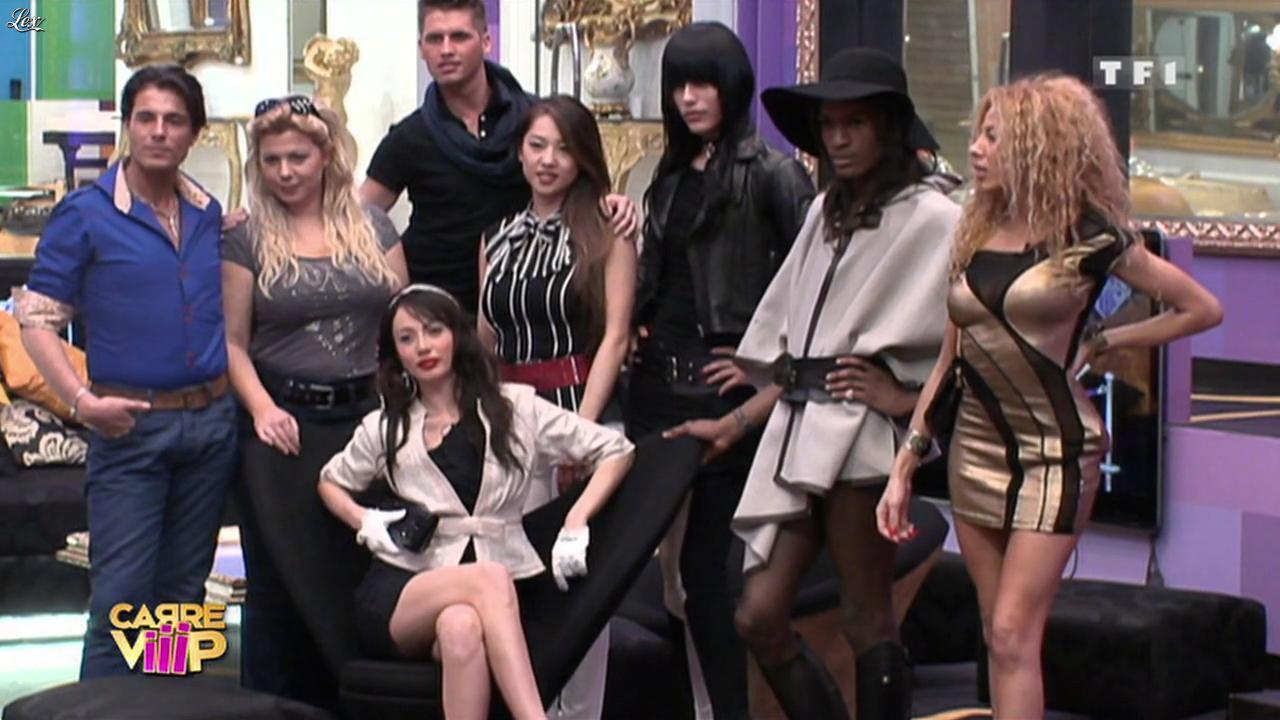 Carré Viiip. Diffusé à la télévision le 21/03/11.