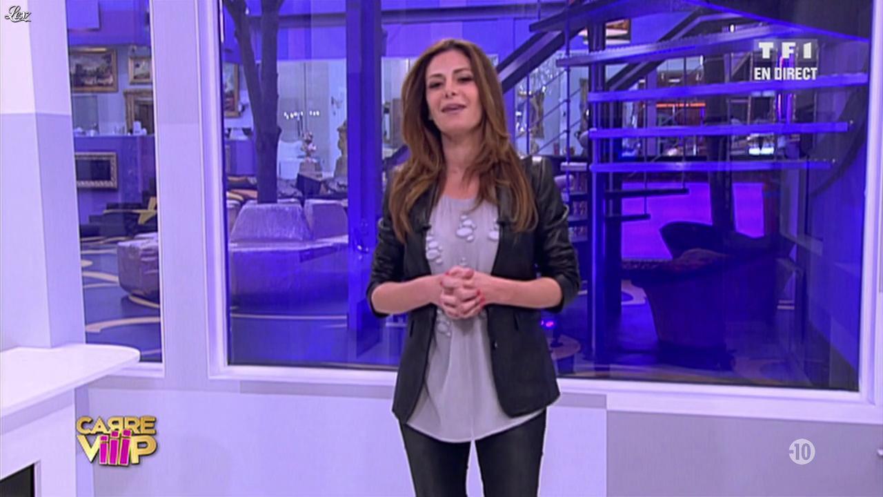 Carré Viiip. Diffusé à la télévision le 28/03/11.