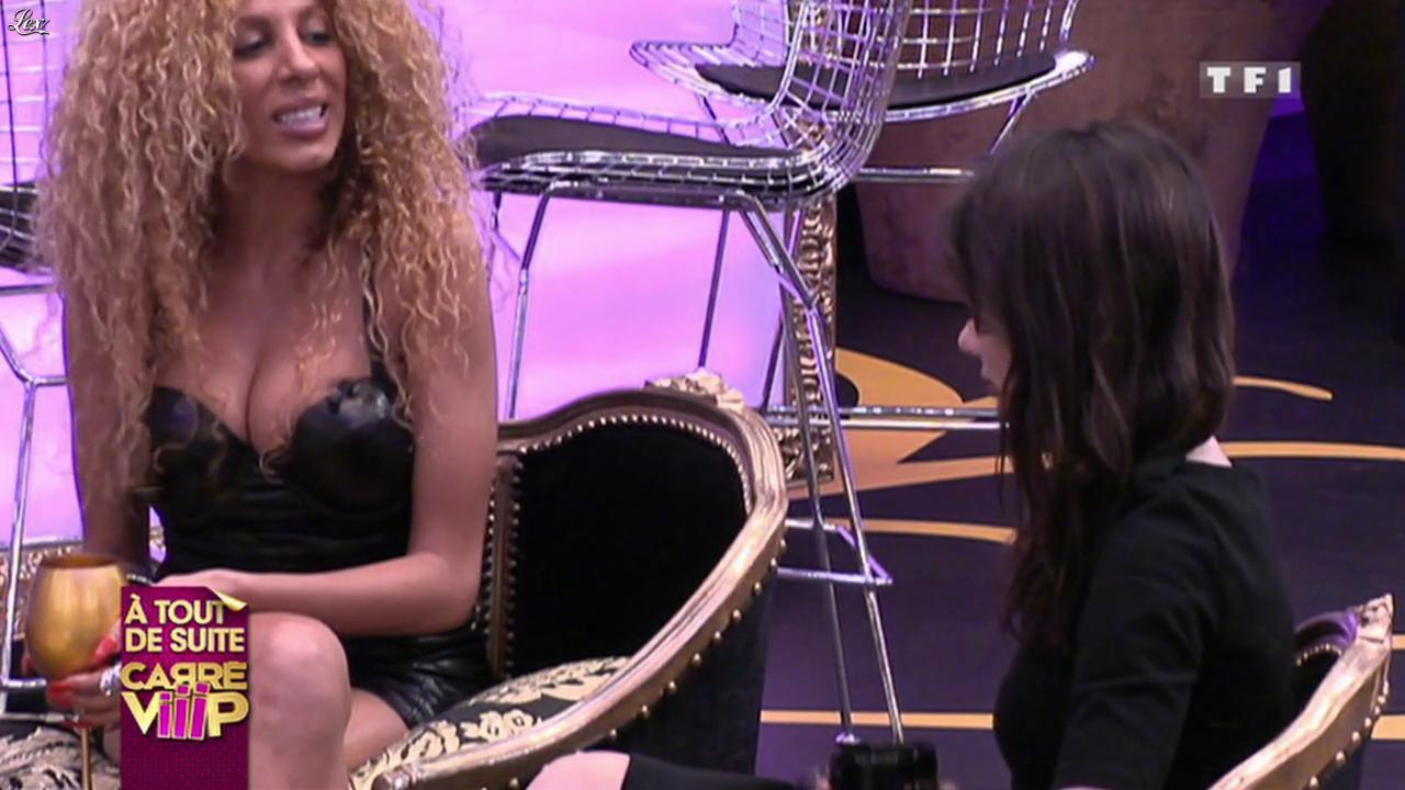 Carré Viiip. Diffusé à la télévision le 29/03/11.