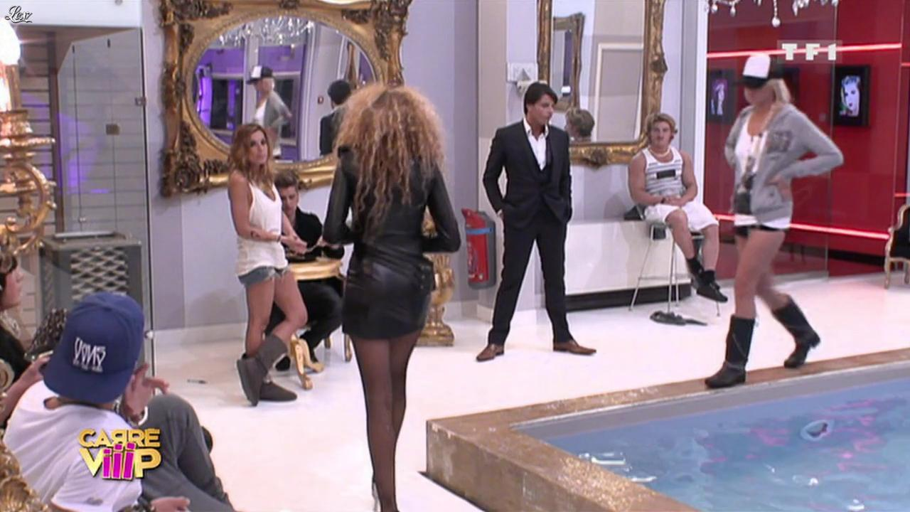 Carré Viiip. Diffusé à la télévision le 31/03/11.