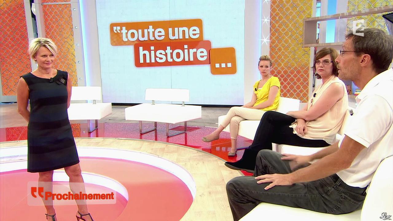 Sophie Davant dans une Bande-Annonce de Toute une Histoire. Diffusé à la télévision le 16/10/13.