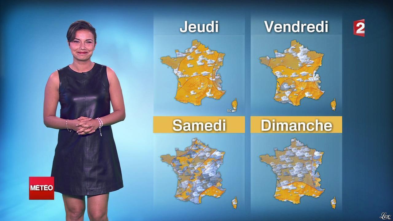 Anaïs Baydemir à la Météo de 20h. Diffusé à la télévision le 29/07/14.
