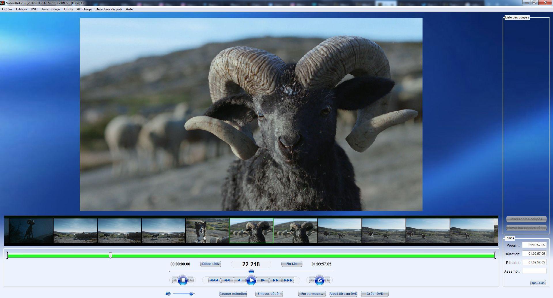 ext - Vignettes dans VideoRedo